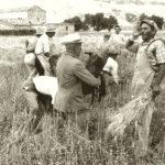 Franco-Pinna-San-Giorgio-Lucano-Il-gioco-della-falce-Giugno-1959-Foto-2