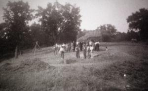 contadini-nellaia-con-pedine-di-grano-in.900-salomone