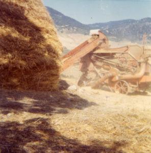 contadini-trebiatura-morelli