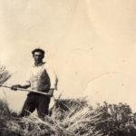 contadini-uomo-su-carro-valentino-maria